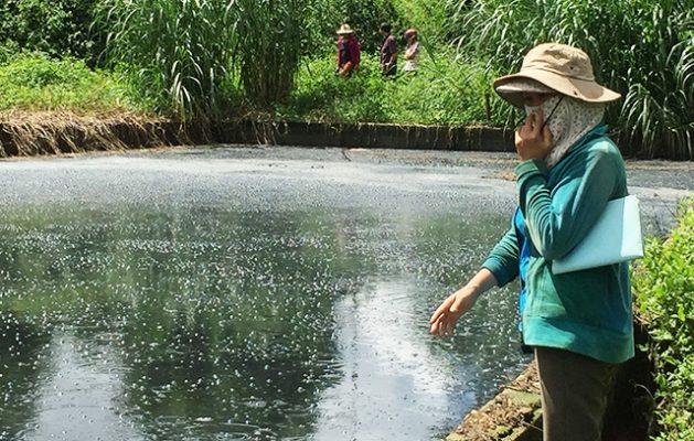 Đặc trưng nước thải chế biến cao su? Xử lý nước thải cao su